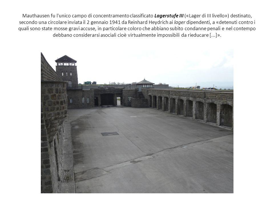 Mauthausen fu l unico campo di concentramento classificato Lagerstufe III («Lager di III livello») destinato, secondo una circolare inviata il 2 gennaio 1941 da Reinhard Heydrich ai lager dipendenti, a «detenuti contro i quali sono state mosse gravi accuse, in particolare coloro che abbiano subito condanne penali e nel contempo debbano considerarsi asociali cioè virtualmente impossibili da rieducare [...]».